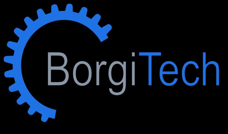 BorgiTech